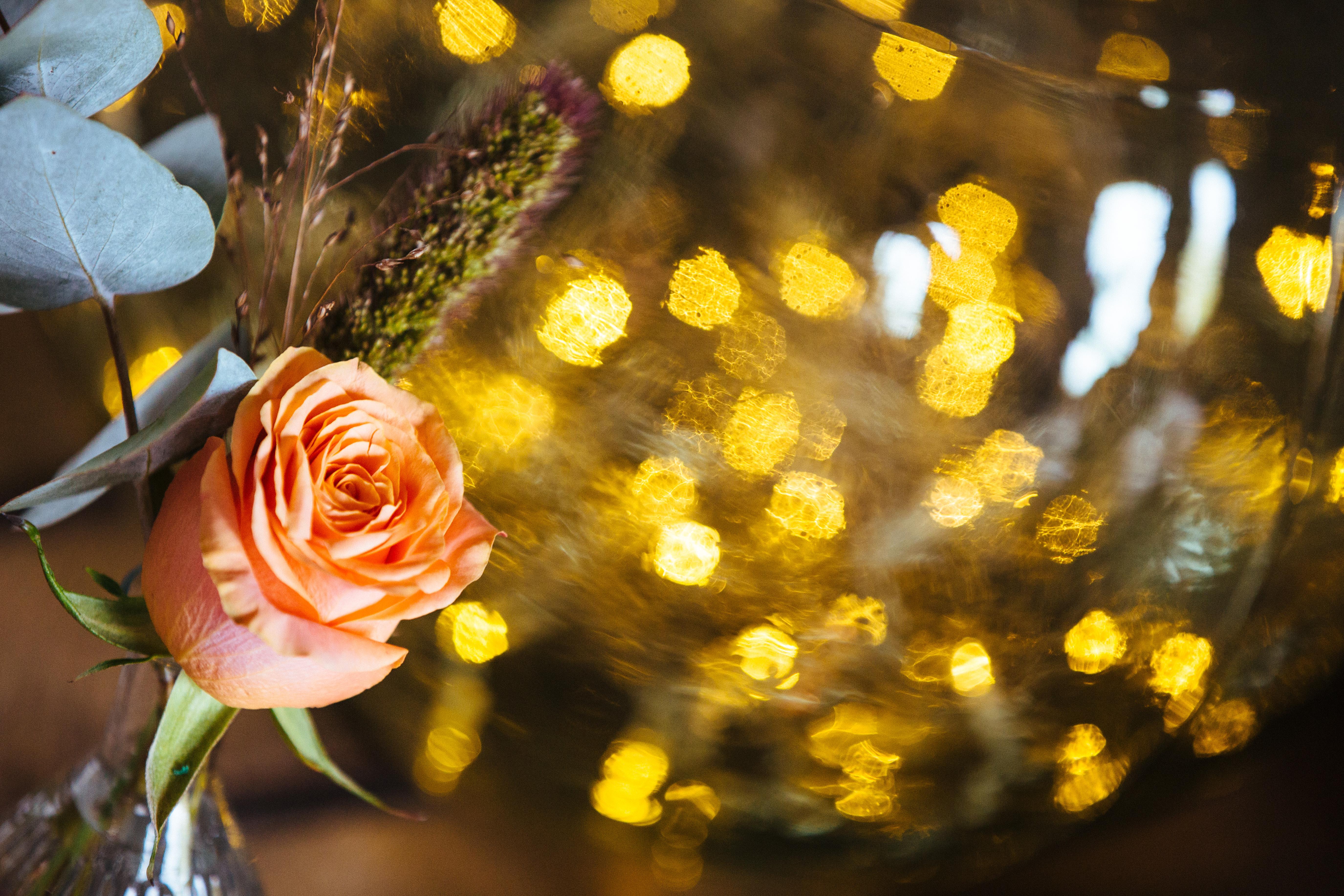 décoration de mariage orange - plan de table - dame jeanne lumineuse - rose orange - eucalyptus